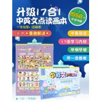 17 in 1 learning card Picture  Voice Electronic Sound Learning Chinese English Whiteboard Piano design